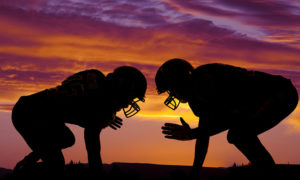 Tampa Bay Sports Medicine